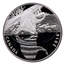 2016 Canada $10 1/2 oz. Proof Silver Reflections of Wildlife - Otter