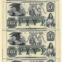 New England Commercial Bank Coins