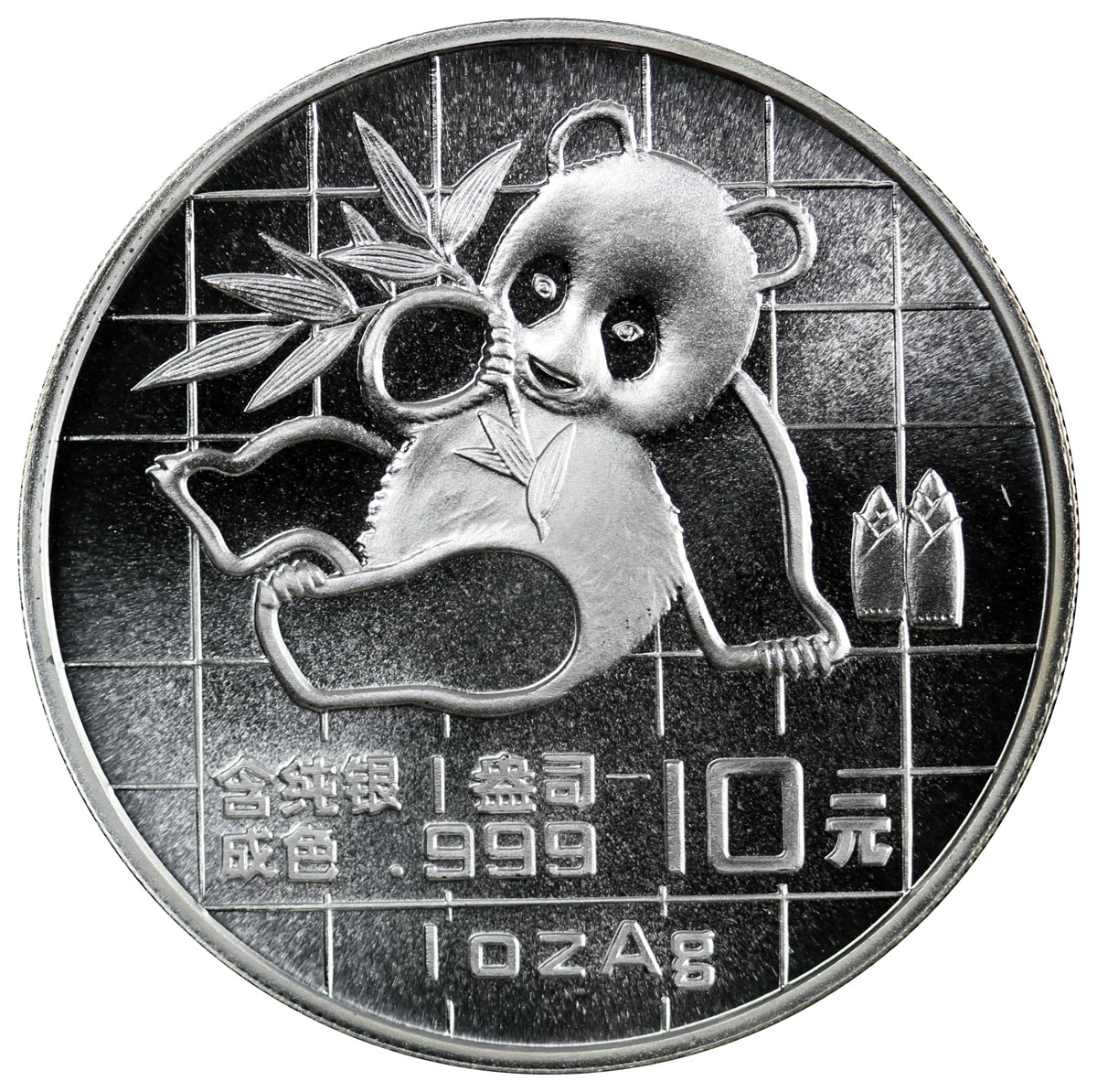 1989 China 1 oz Silver Panda ¥10 Coin BU