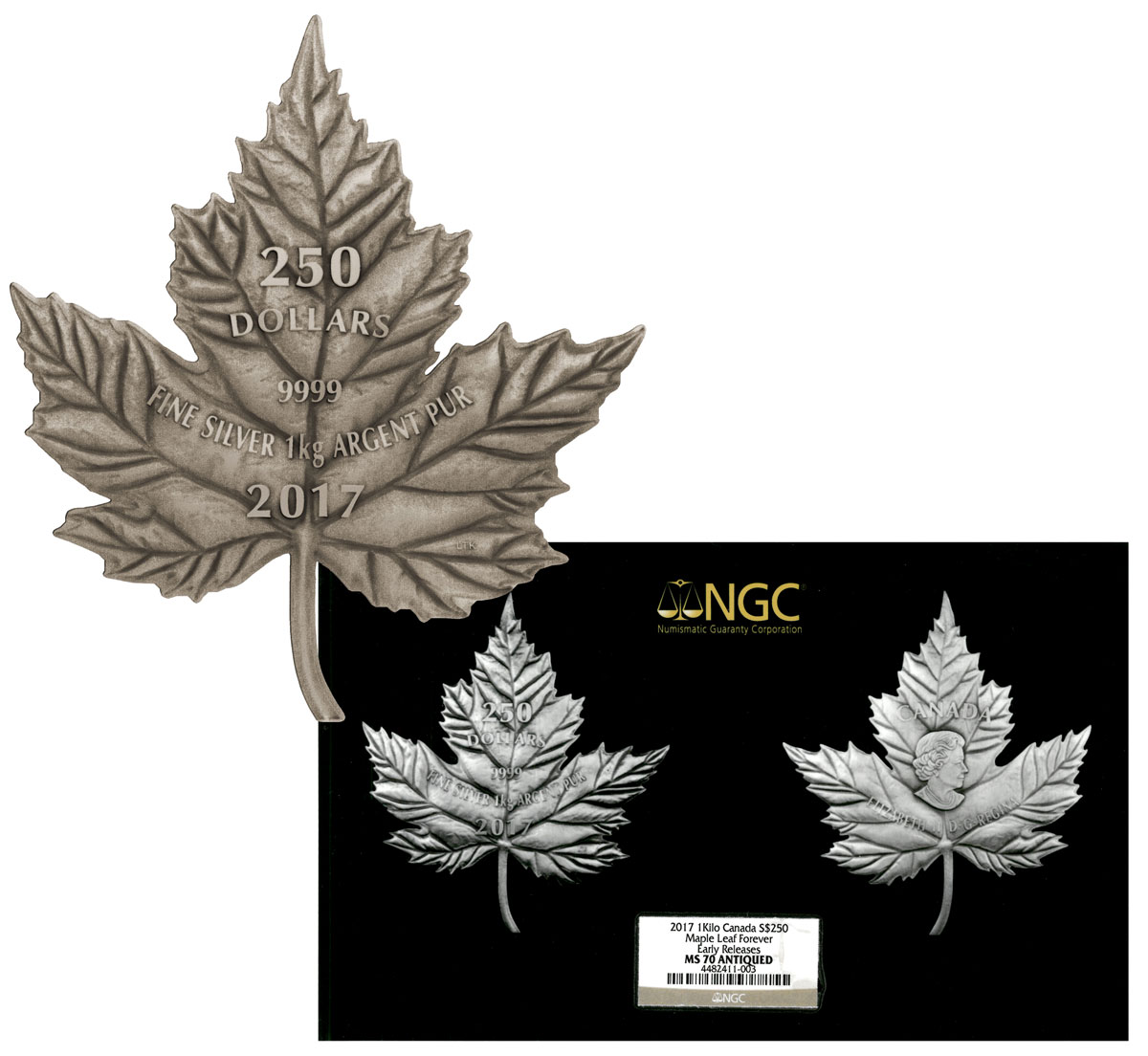 2017 Canada Maple Leaf Shaped 1 Kilo Silver Antiqued $250 Coin NGC MS70 ER