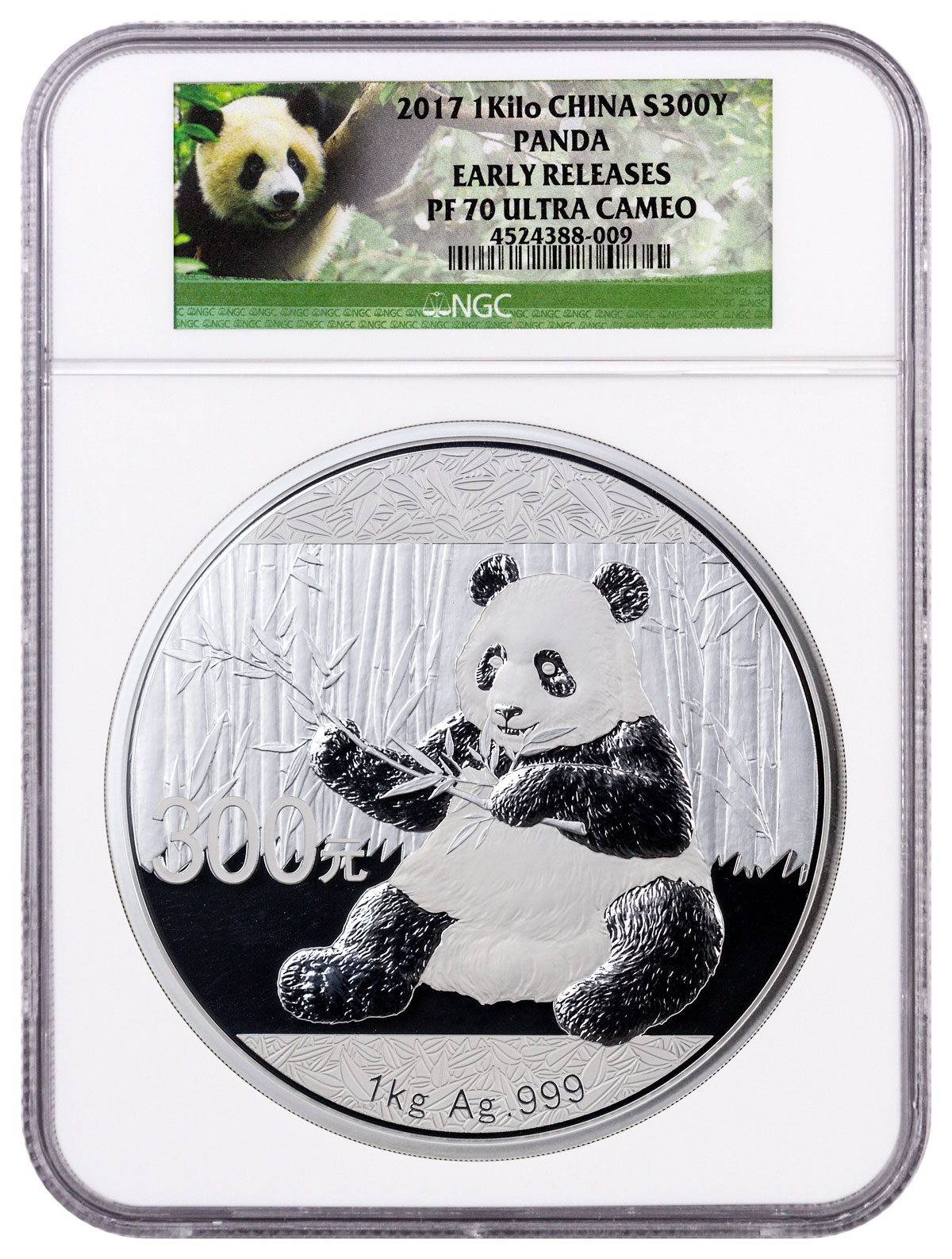 2017 China 1 kilo Silver Panda Proof ¥300 Coin NGC PF70 UC ER (Exclusive Panda Label)
