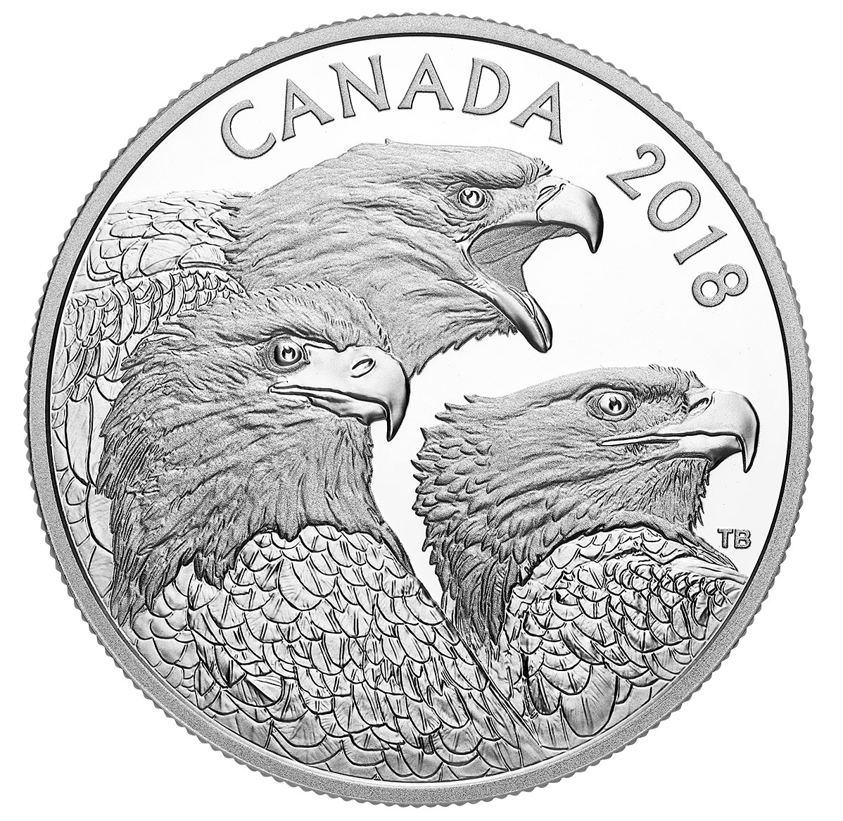 2018 Canada Magnificent Bald Eagles 1 oz Silver Proof $15 Coin GEM Proof OGP