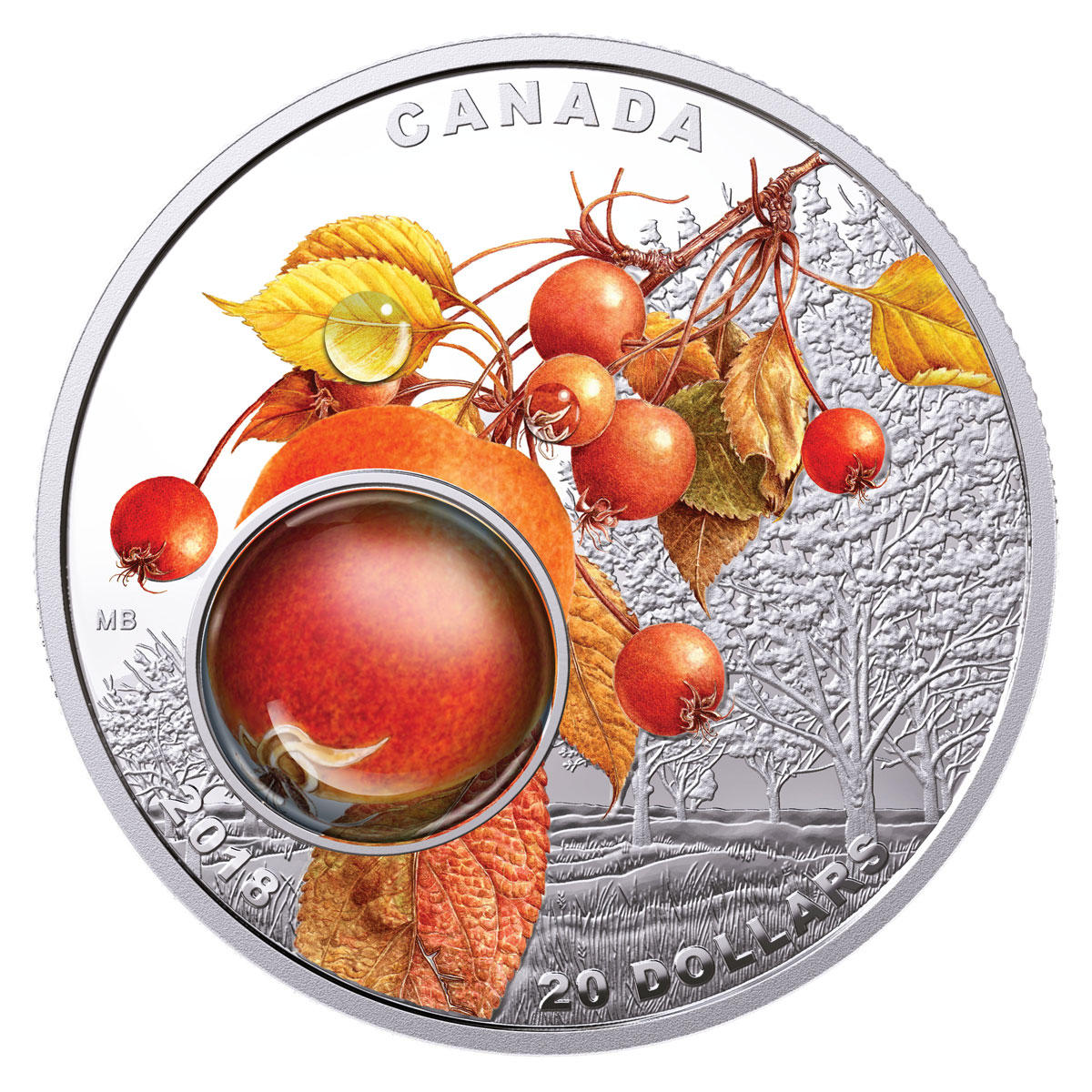 2018 Canada Mother Nature's Magnification - Morning Dew 1 oz Silver Colorized Proof $20 Coin Original Government Box