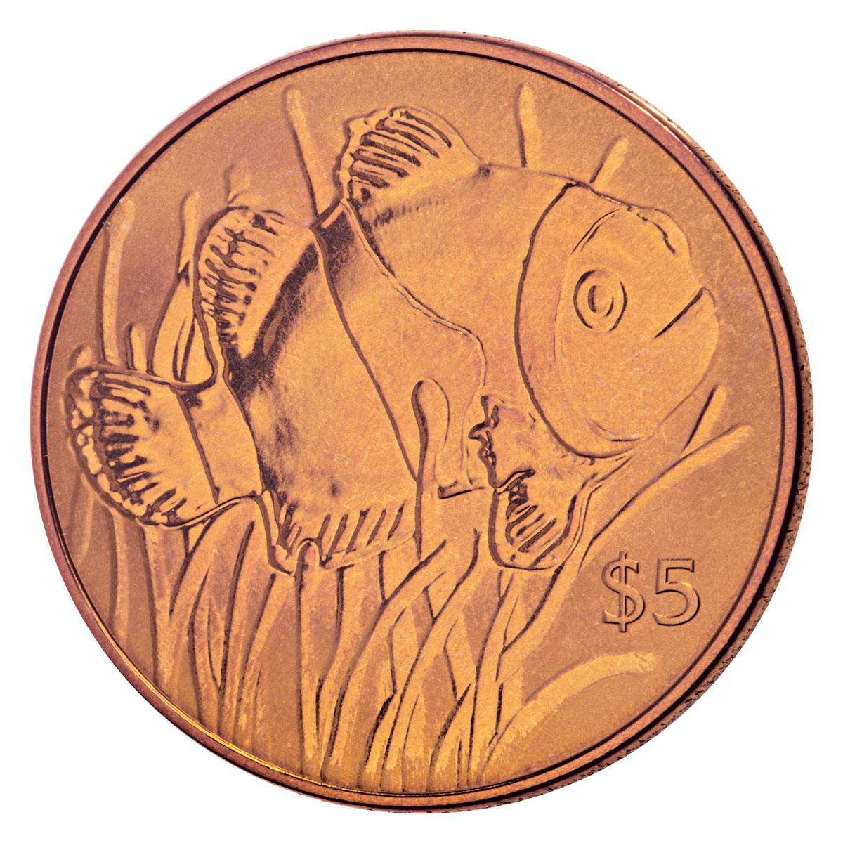 2018 British Virgin Islands Clownfish 10 g Orange Titanium $5 Coin GEM BU