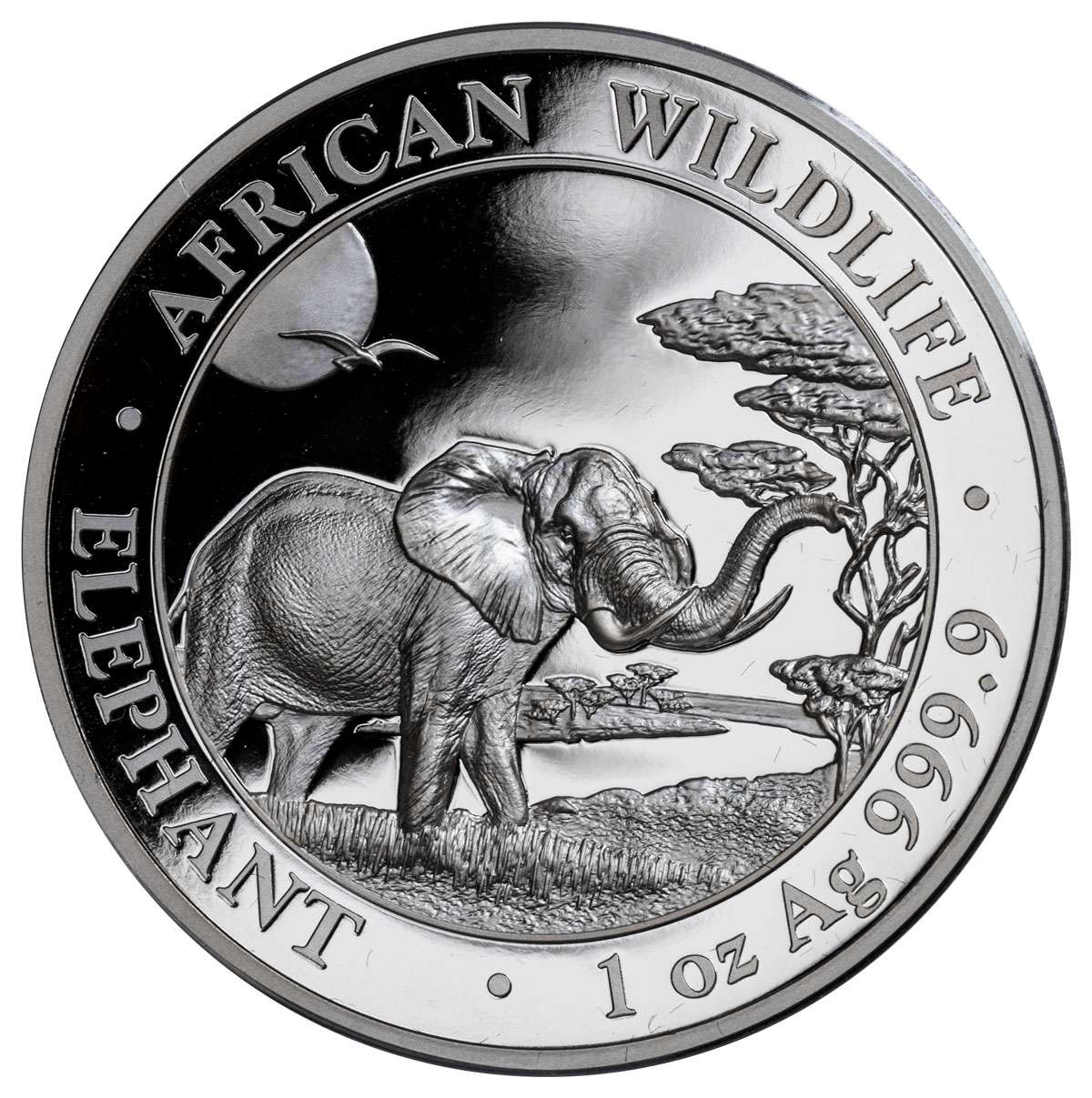 2019 Somalia 1 oz High Relief Silver Elephant Proof Sh100 Coin GEM Proof OGP