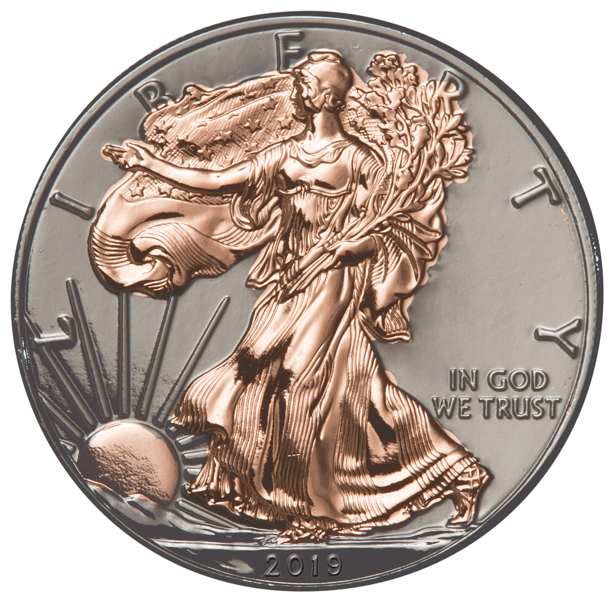 2019 1 oz Silver American Eagle $1 Coin Black Ruthenium and Rose Gold GEM BU