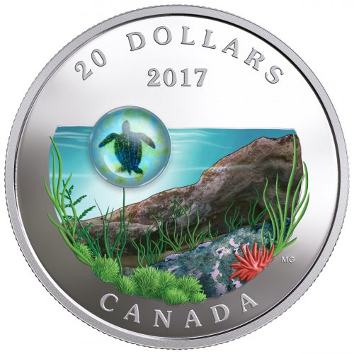 2017 Canada Under the Sea - Sea Turtle 1 oz Silver Colorized Proof $20 Coin GEM Proof OGP