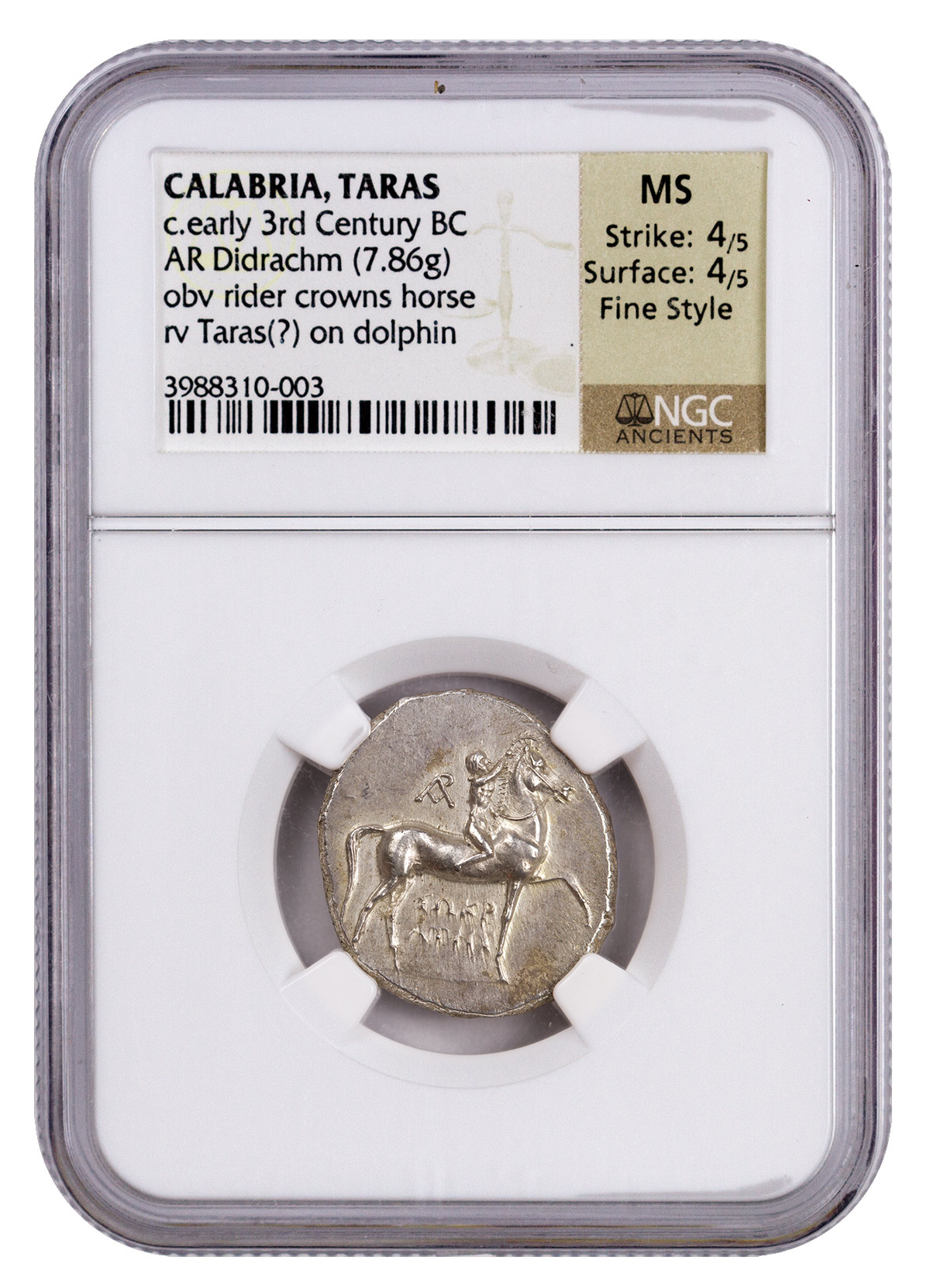 Calabria, Taras Silver Didrachm (c.Early 3rd Century BC) - obv. Rider Crowns Horse/rv. Taras on Dolphin NGC MS (Strike: 4/5, Surface: 4/5 - Fine Style)