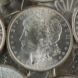 Collecting Morgan Silver Dollars