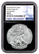2018-W Burnished American Silver Eagle NGC MS70 FR Black Core Holder
