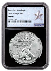 2018-W Burnished American Silver Eagle NGC MS69 Black Core Holder West Point Silver Star Label