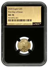 2020 1/10 oz Gold American Eagle $5 NGC MS70 FDI Black Core Holder Exclusive Gold Foil Label