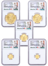 5-Coin Set - 2019-Mo Mexico Gold Libertad Coins NGC MS70 FR Exclusive Mexico Label