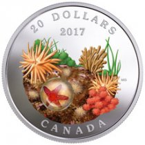 2017 Canada Under the Sea - Sea Star 1 oz Silver Colorized Proof $20 Coin Murrini Glass GEM Proof OGP