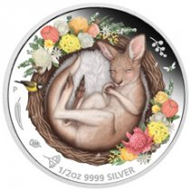 2021-P Australia Dreaming Down Under - Kangaroo 1/2 oz Silver Colorized Proof $0.50 Coin GEM Proof
